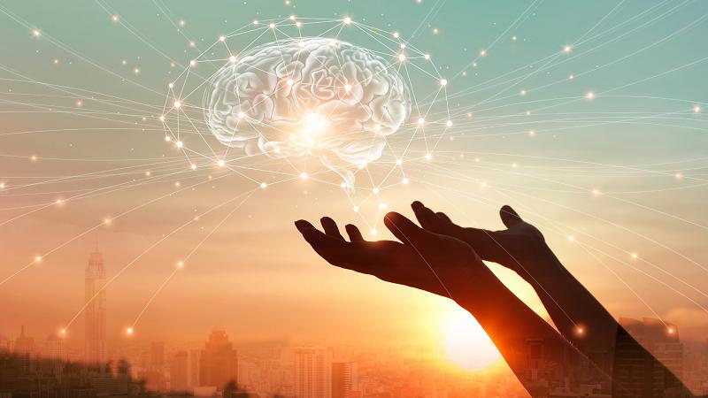 Houd je hersenen fit met Möller's Omega 3